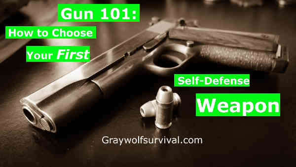 Gun 101 - How to Choose Your First Self-Defense Weapon. Most advice you hear about how to choose a weapon is unhelpful or even incorrect. The basics are all quickly broken down for you here and then you're given further resources to make the best choice. http://graywolfsurvival.com/3720/gun-101-choose-first-self-defense-weapon/