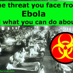 The threat you face from Ebola and what you can do about it