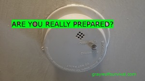 If most people prepare to ensure their survival, then wouldn't it make sense that you take precautions with things which can immediately impact you first? Then prepare for other possibilities? Are you really prepared? https://graywolfsurvival.com/3660/really-prepared/