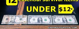 12 essential survival items under 12 dollars