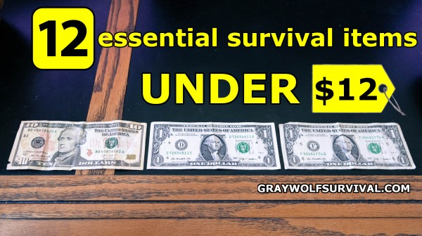 12 essential survival items under $12