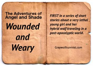 The Adventures of Angel and Shade ep1 – Wounded and Weary